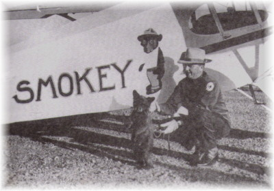 Smokey and his specially chartered plane that took him from New Mexico to the National Zoo in Washington DC.