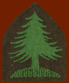 The Forest Ranger shoulder insignia issued in 1932.